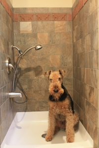 Custom brick tiles in dog shower